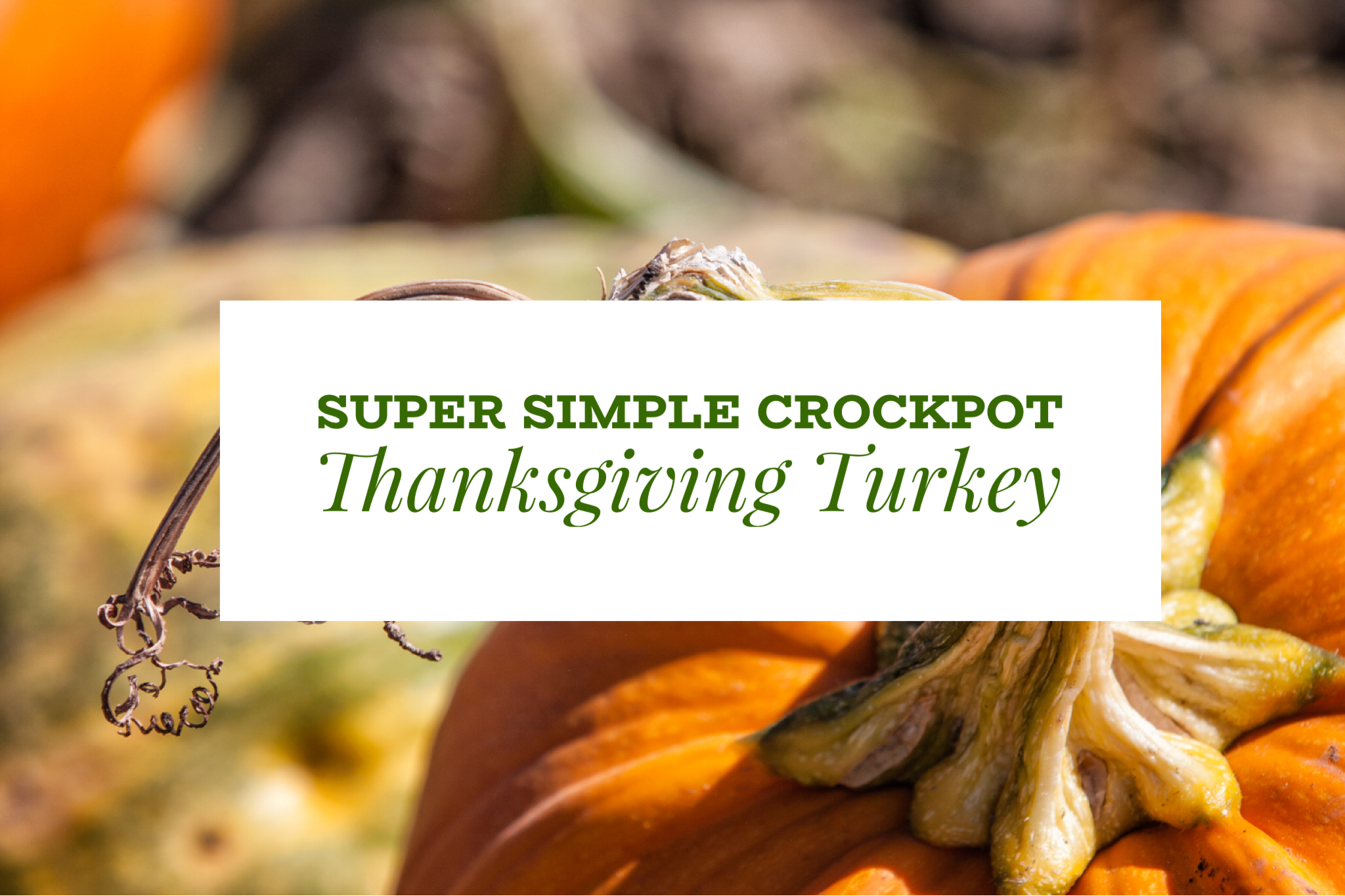 Super Simple Crockpot Thanksgiving Turkey